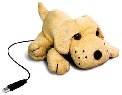 10.3.06---dogcam
