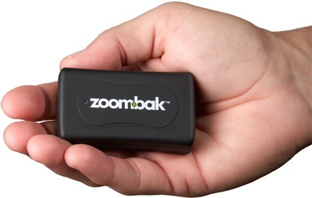 zoombak-hand1.jpg