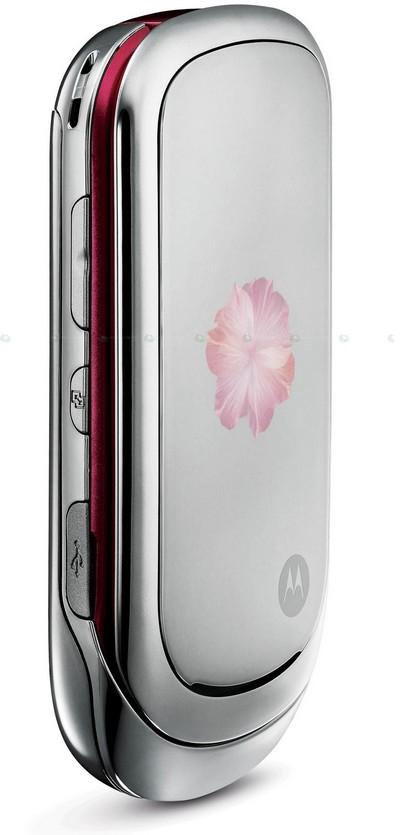 Motorola_PEBL_Rose_Bloom_001