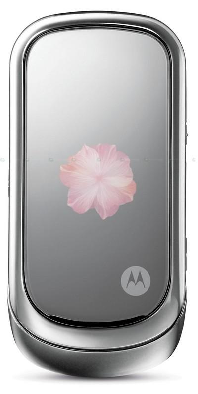 Motorola_PEBL_Rose_Bloom_002