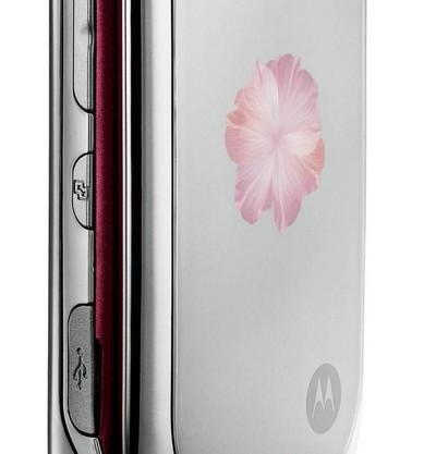 Motorola_PEBL_Rose_Bloom_1