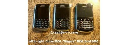 Blackberry-niagara-9630-2