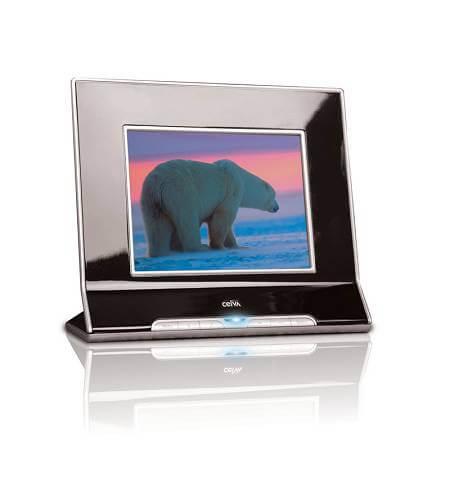 CEIVApro80_polarbear