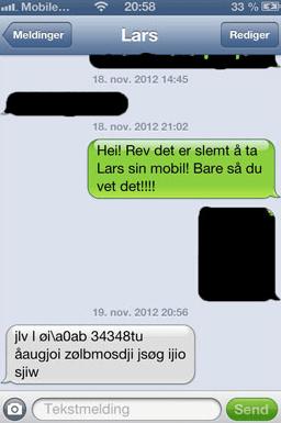 SMS-cообщение лисы