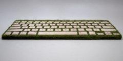 Классная клавиатура для любителей природы