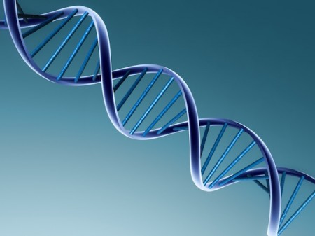 Study Finds How Genes That Cause Illness Work