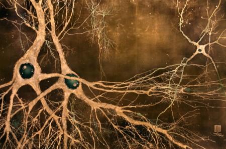 Нейроны маки-е