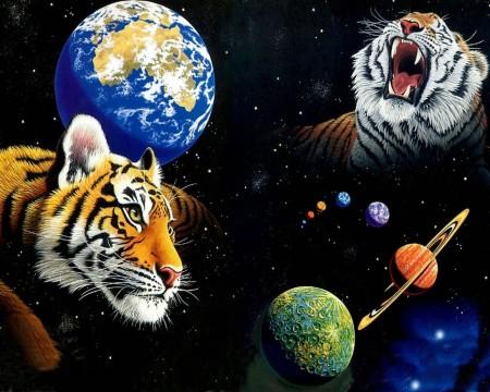 Тигры в космосе