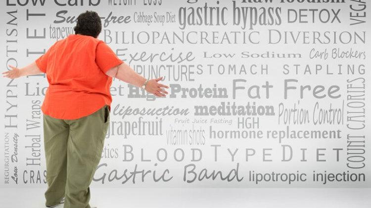 gut-microbe-obesity