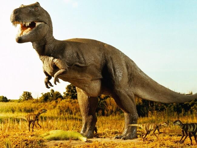 В Испании нашли яйца динозавров