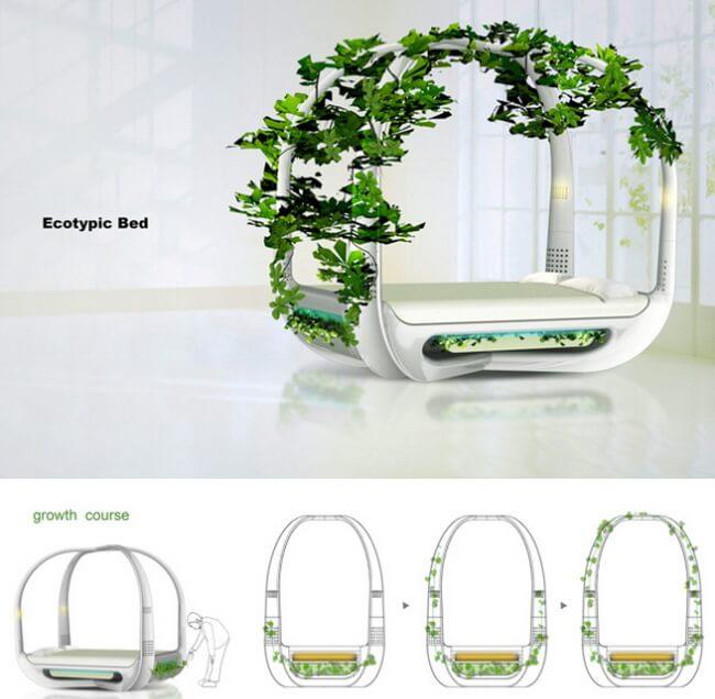 ecotypic-be