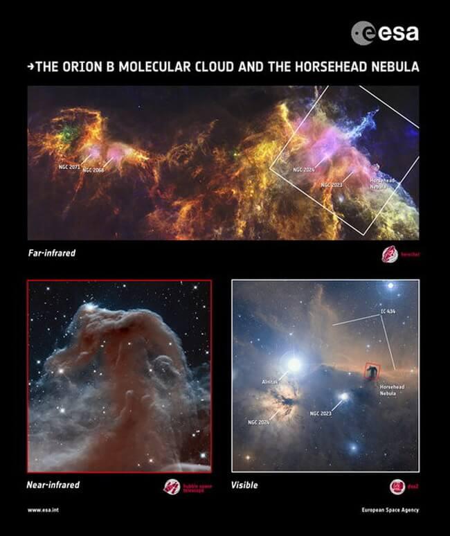 hubble-herschel-horsehead-nebula-3