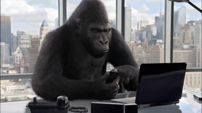 gorilla glass nbt