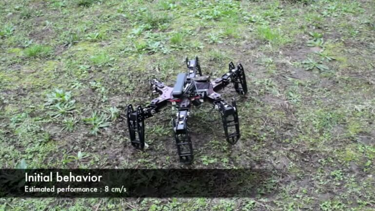 clever-hexapod-3