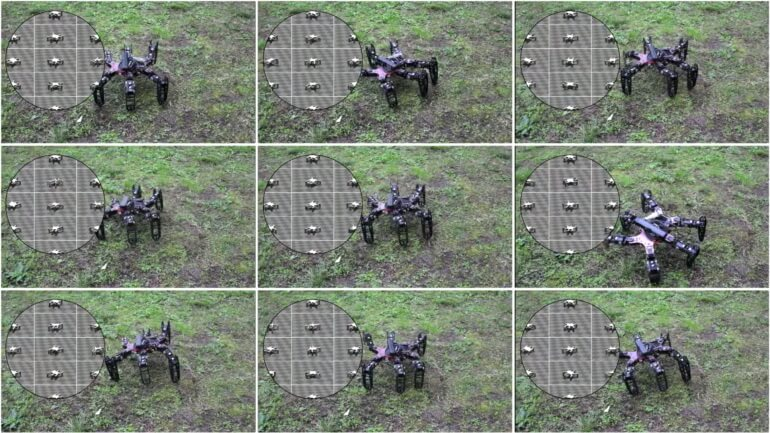 clever-hexapod-5
