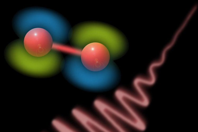 Молекулы света