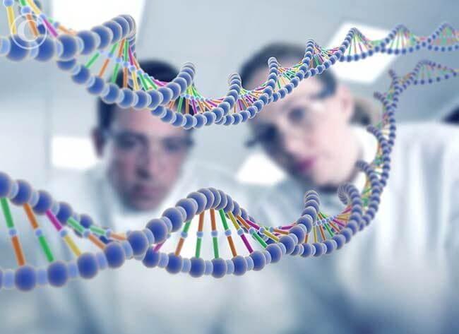 Генетики обнаружили гены, формирующие черты лица