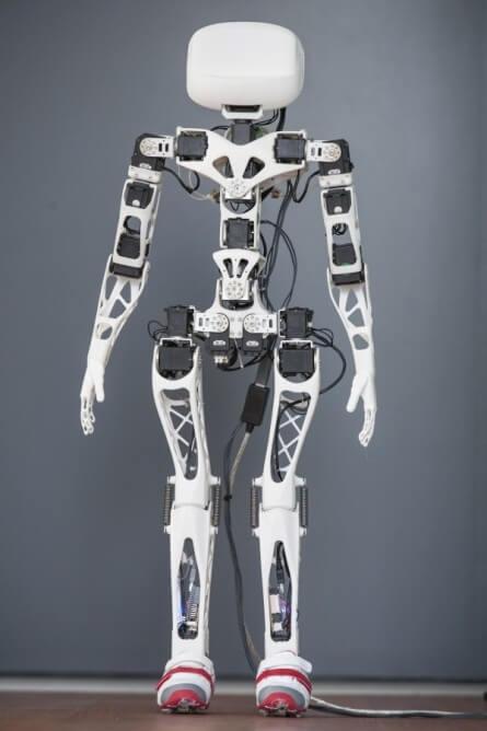 poppy-robot-2