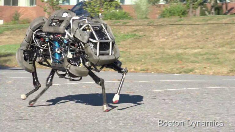 wildcat-robot-1