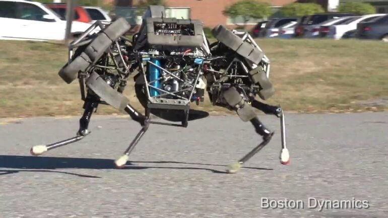 wildcat-robot-2