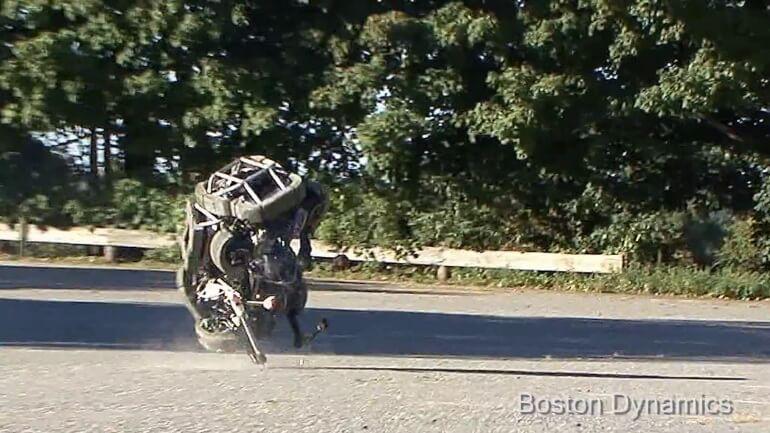 wildcat-robot-3