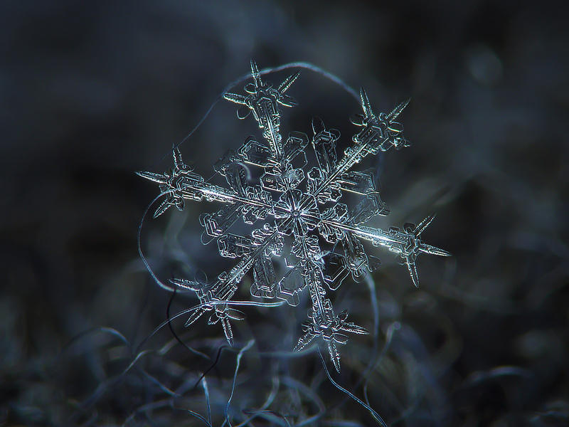 Каждая снежинка - это, прежде всего, уникальная личность