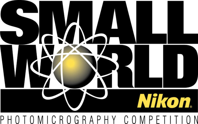 Nikon Small World