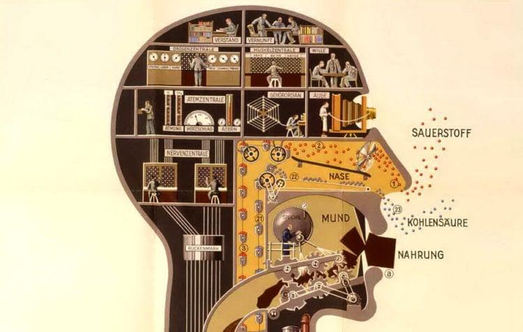 10 необычных защитных механизмов человеческого организма