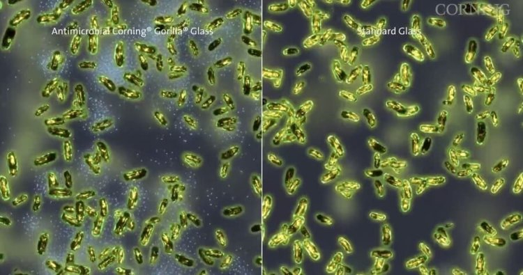 Antimicrobial Gorilla Glass