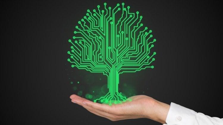 plant-biosensor