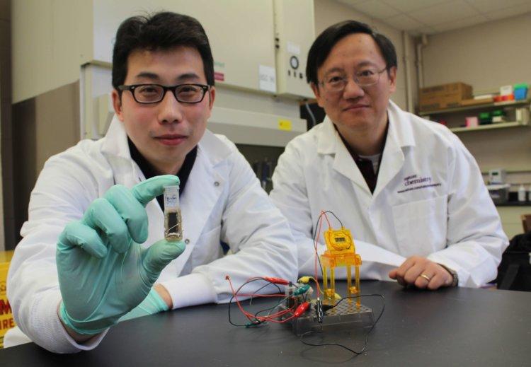 Профессор Персиваль Чжан (слева) и его коллега