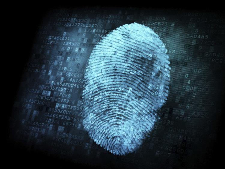 Сканер отпечатков пальцев в Galaxy S5 будет на весь экран