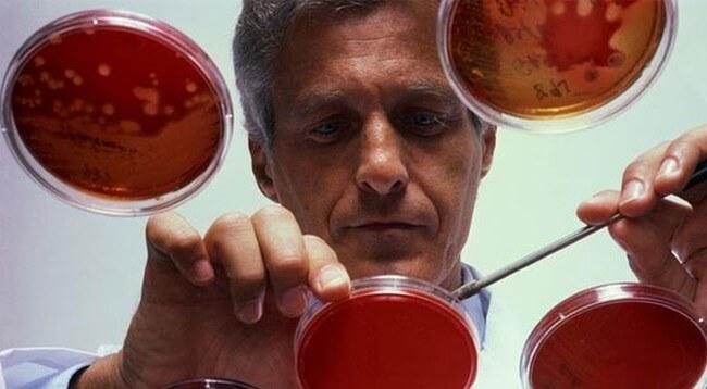 Учёным удалось победить рак крови