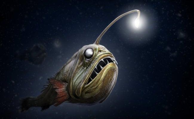 Глубоководная жизнь океана в творчестве