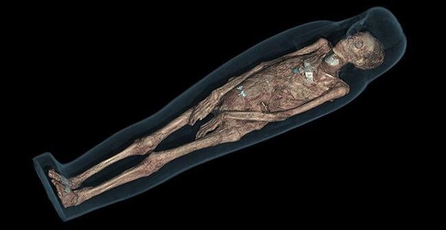 Британский музей совместно с Samsung займутся оцифровкой тел египетских мумий