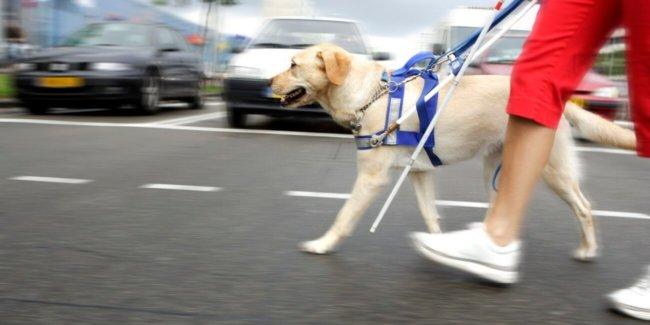 Microsoft разрабатывает носимое устройство для слепых