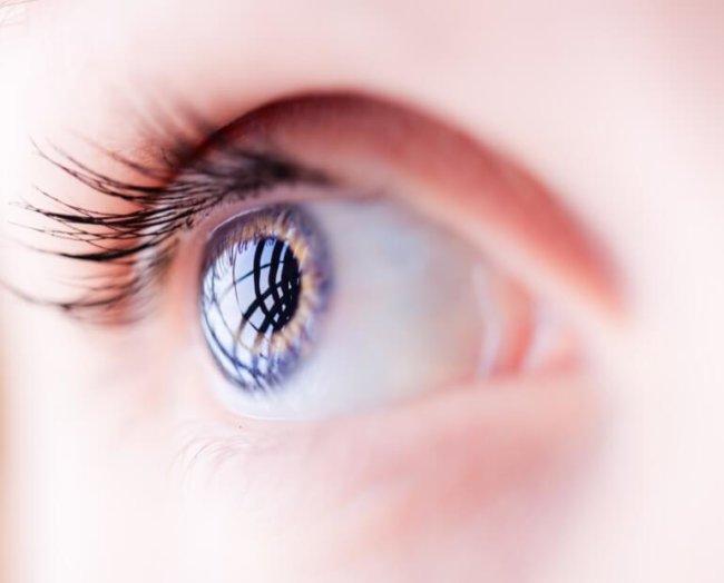 cornea-stem-cells