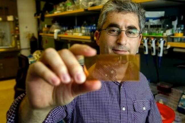 Разработан чип для диагностирования диабета