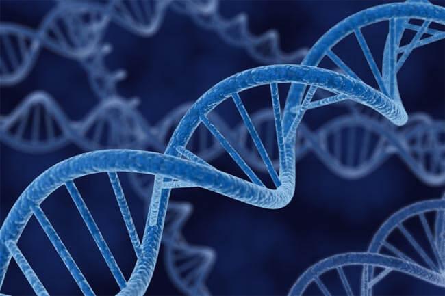 Google на основе генетических исследований создаст модель человека с идеальным здоровьем
