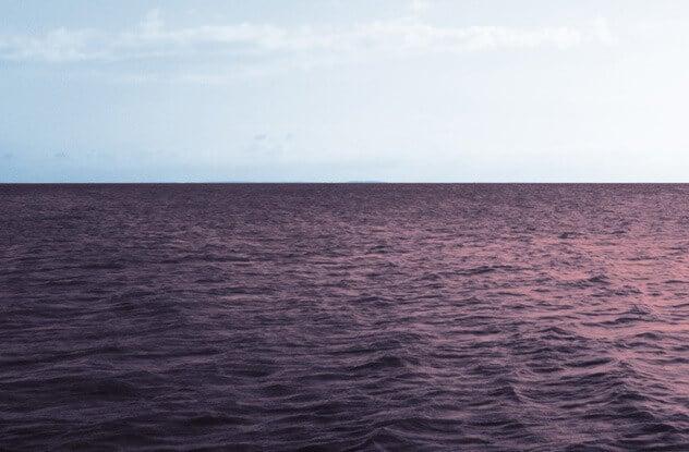 Фиолетовый океан