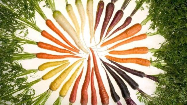 продукты здорового питания нижний новгород