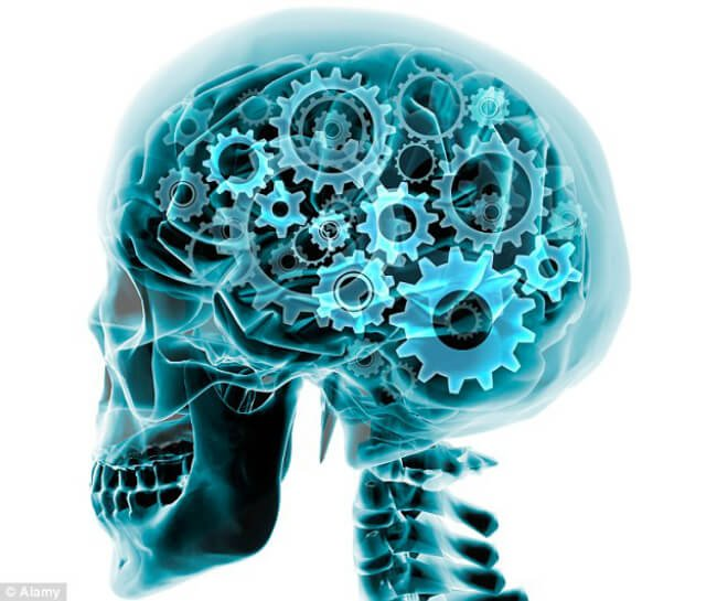 Мозговой механизм