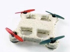 drone-fungus