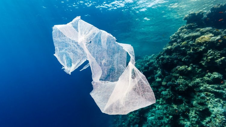 Создан разлогающийся пластик