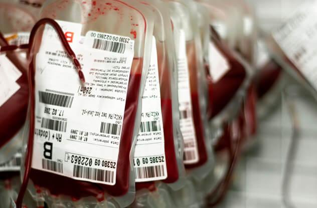 Золотая кровь