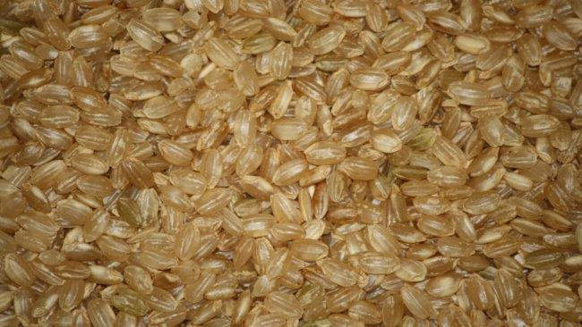 Короткозерный коричневый рис