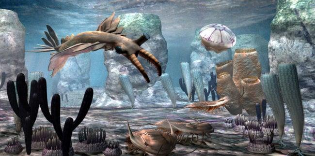 cambrian-sea-reconstruction