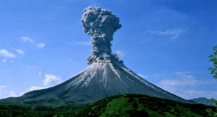 Вулканы помогли некоторым формам жизни пережить апокалипсис