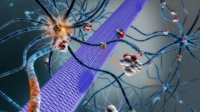 Лекарство от эпилепсии будут подавать прямо в мозг с помощью микронасоса