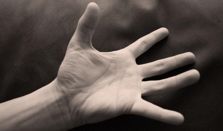 Сколько микроорганизмов живут на наших руках